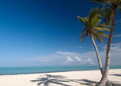 A pristine beach in Punta Cana