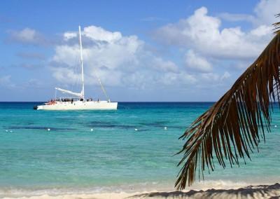 Catamaran trip to Isla Catalina