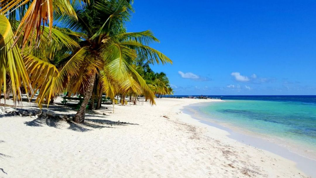 Pristine Beach on Saona Island