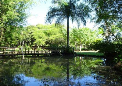 Jardín Botánico en Santo Domingo